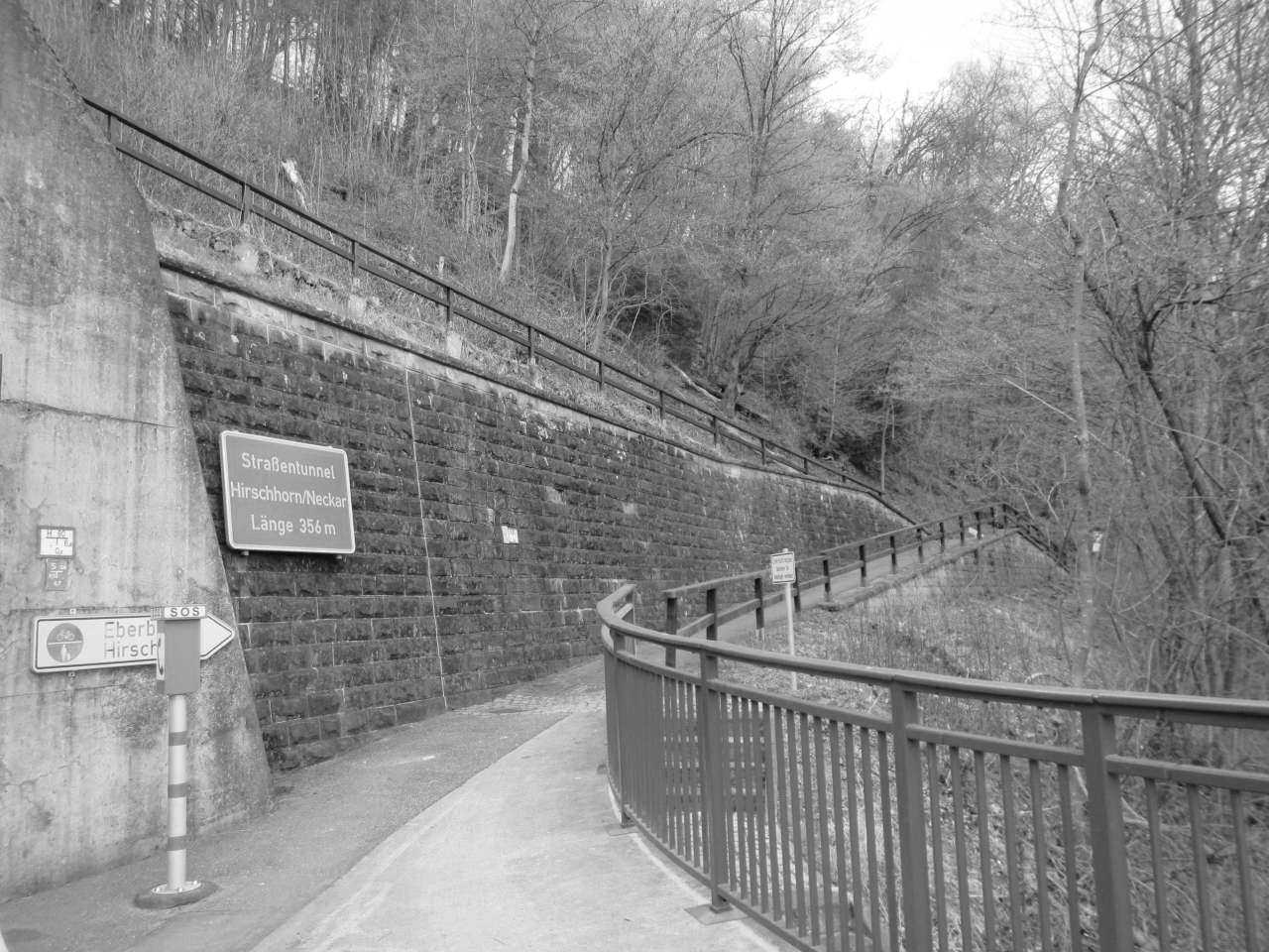 Bauwerksprüfungen Tunnel Hirschhorn