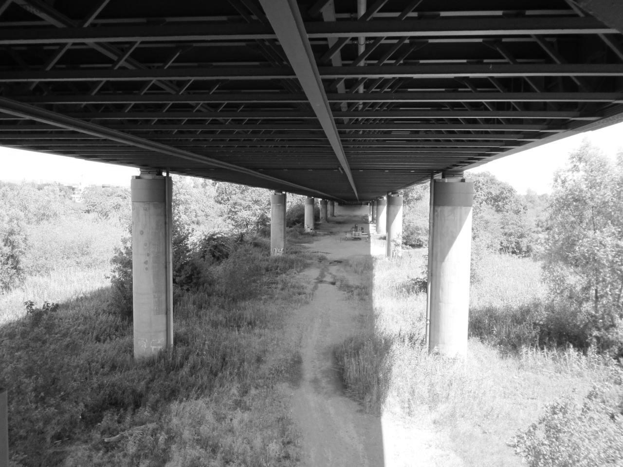Erweiterte EP Rhein Vorlandbrücke Mainz-Weisenau i. Z. d. A 60
